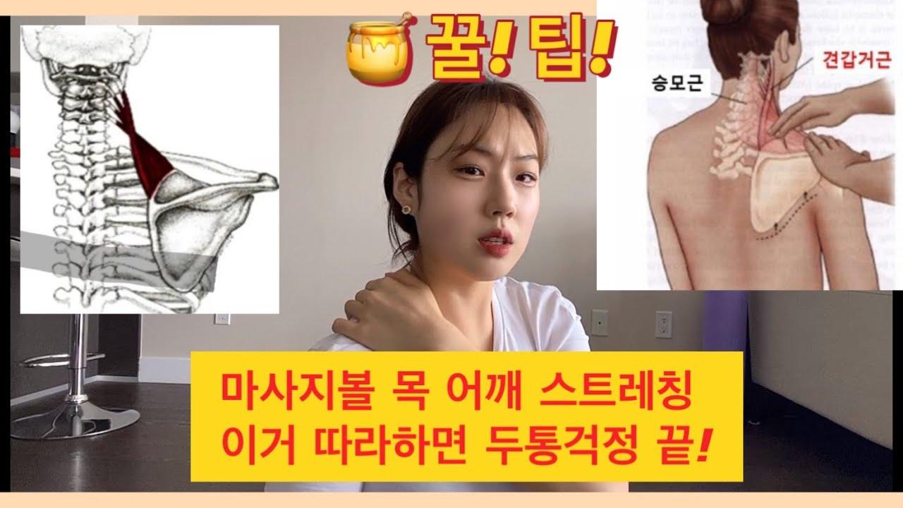 마사지볼 어깨통증 없애기 꿀팁 1탄!!! [캐나다 마사지테라피스트가 알려주는 마사지법]