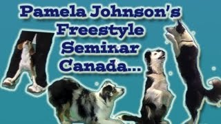 Canine Freestyle Seminar In Canada