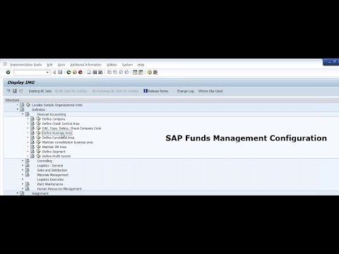 SAP Funds Management Configuration