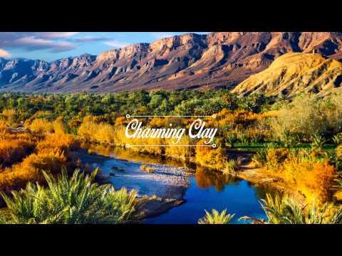 Worakls - Bleu (N'to Remix) | Charming Clay