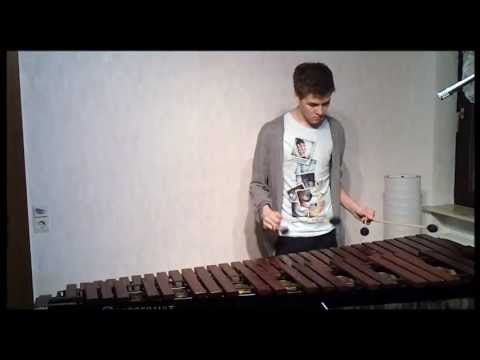 Coldplay- Paradise Marimba Cover