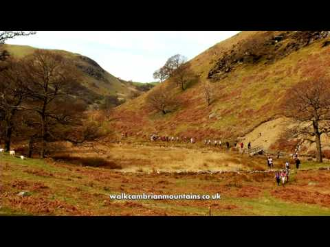 The Cambrian Mountains   your next walking destination