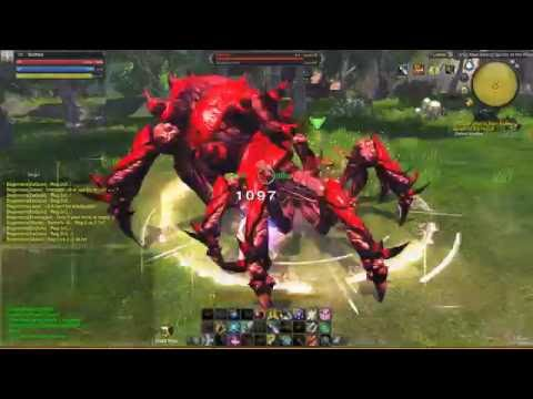 RaiderZ @ Hellhound Daily Quest [TODAY]