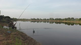 ОТЛИЧНЫЙ УТРЕННИЙ КЛЕВ Ловля плотвы густеры подлещика на удочку Рыбалка на озере