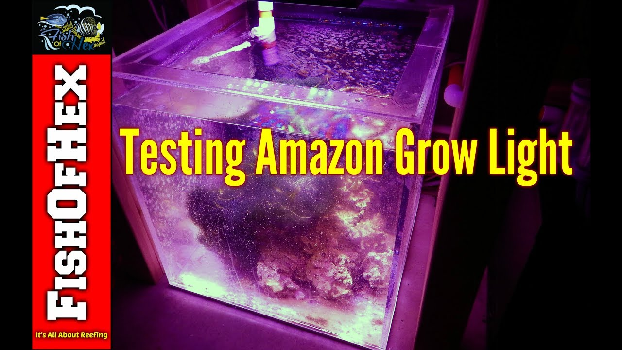testing amazon led grow light over refugium with par readings