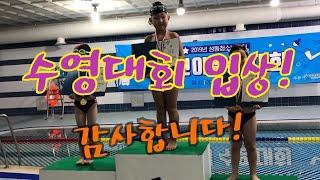 성동청소년수련관 어린이 수영대회! 큰아들 시원이가 열심…