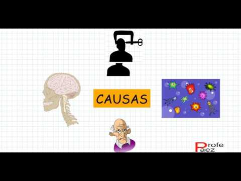 Cuidados del sistema nervioso