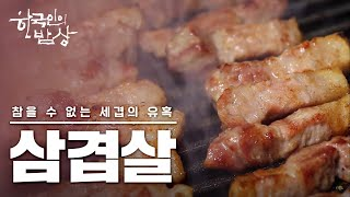 [ENG SUB] Koreans' most beloved dish of all time, pork belly 🐖 (warning: stomach may rumble)