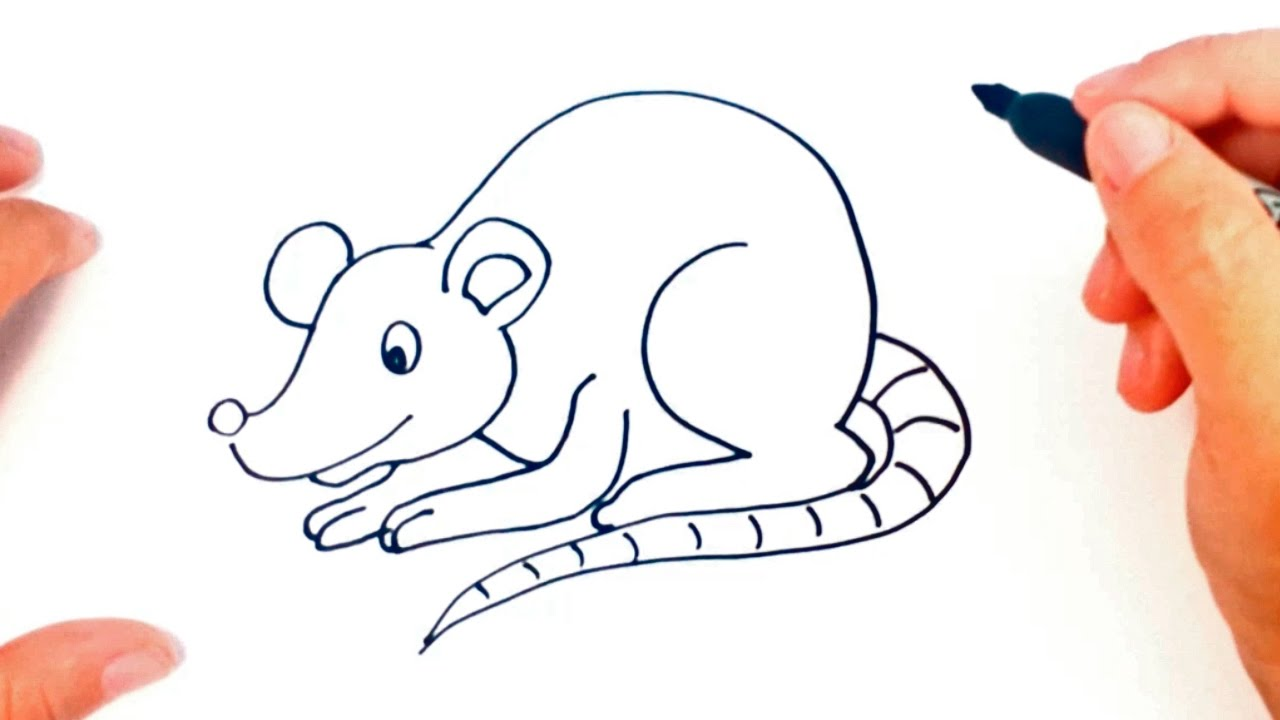 How to draw a rat 63