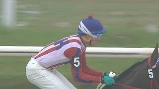 Vidéo de la course PMU PREMIO POLYUS