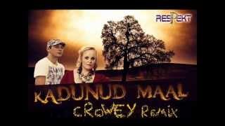 Respekt - Kadunud Maal ( Crowey Remix )