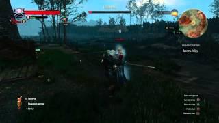 Ведьмак 3: Дикая Охота кейра мец жестокий бой