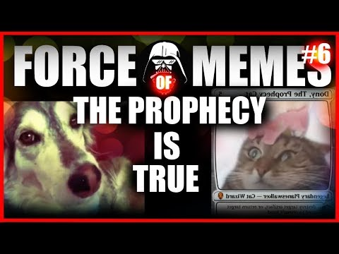 FORCE OF MEMES #6