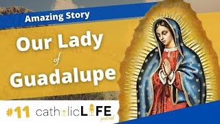 Ep 11: Amazing Facts about Our Lady of Guadalupe | Catholic Life Podcast
