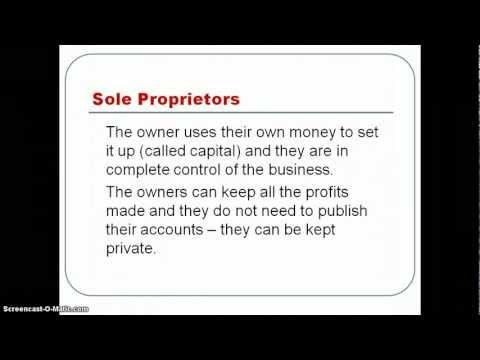 Sole Proprietors and Partnerships
