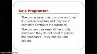 Sole Proprietors and Partnerships