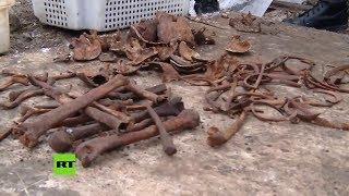 Encuentran restos de unas 600 víctimas del Holocausto en Bielorrusia