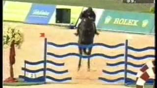 Horse Riding: Show Jumping 'right here right now'