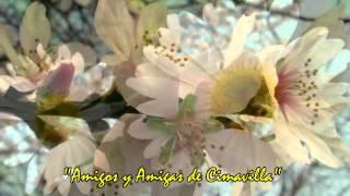 Joan Baez / De Colores