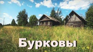 Нежилая деревня Бурковы . Кировская область. Две улицы домов.