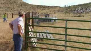 Wyoming Fieldgrove Farm - America's Heartland