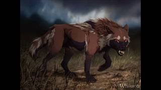 Anime wolves-Battle Scars