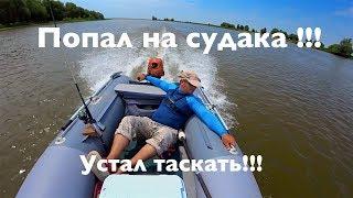 Попал на судака летом !!! Устал таскать ...!! Летняя ловля судака на джиг.