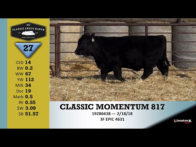 Classic Angus Ranch Lot 27