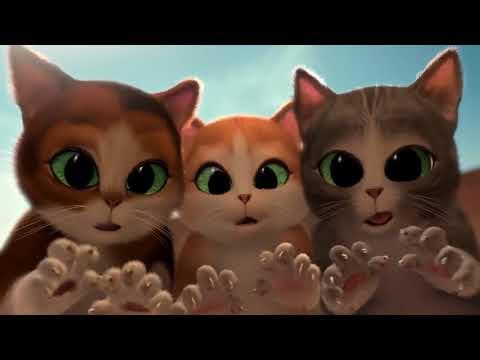 film kartun kucing Terlucu ¦ Paling Lucu ¦ Bikin Ngakak