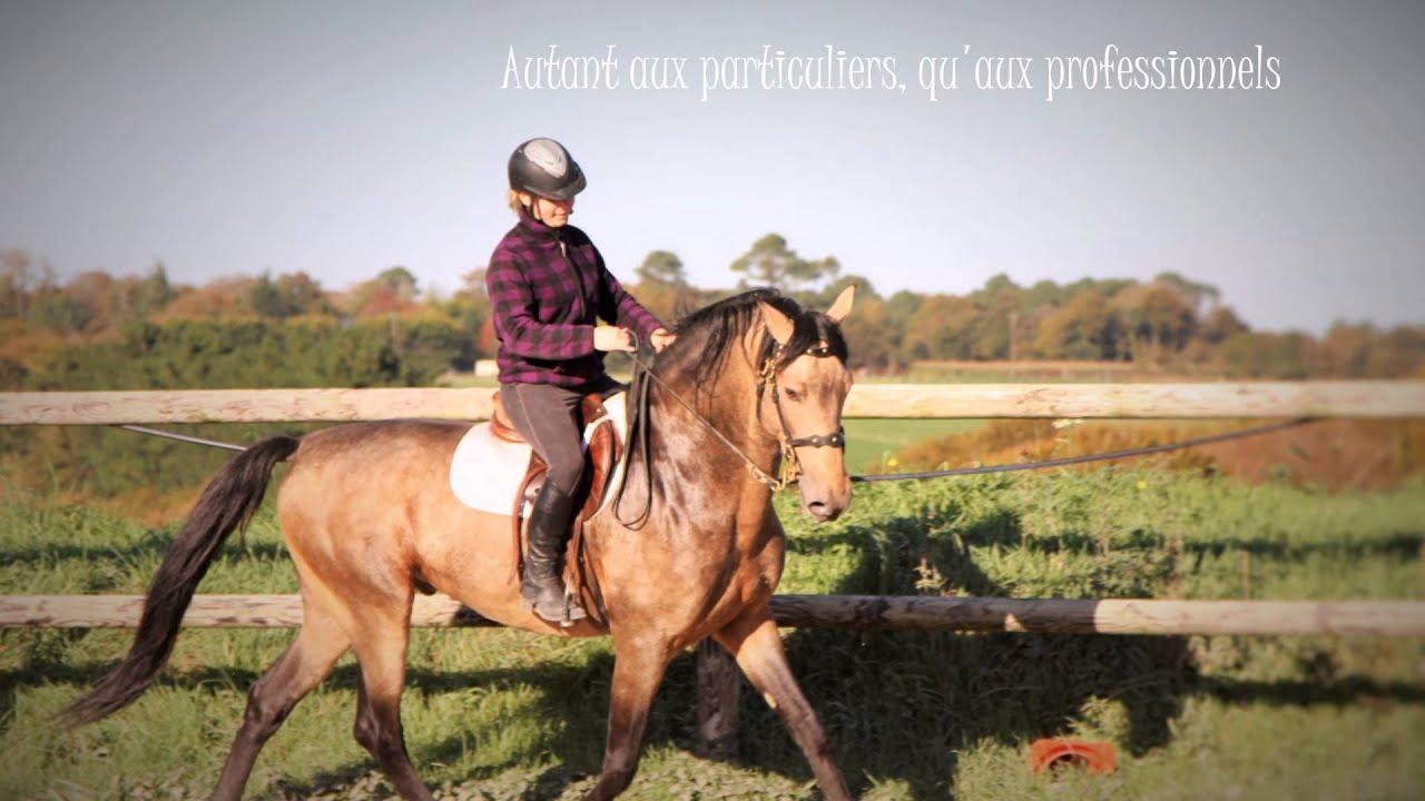 Mon cheval à domicile, Marina Gautier, services équestres à