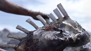 ATG – Alla kan vinna med Harry Boy: Neanderthals