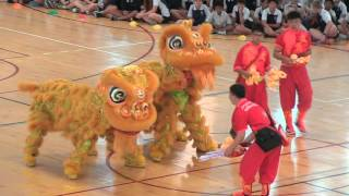 Annual Chinese New Year Lion Dance 2016