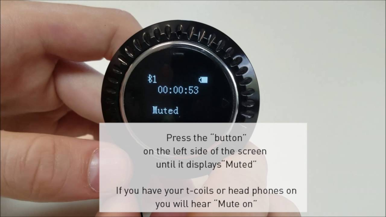 Muting and unmuting a call