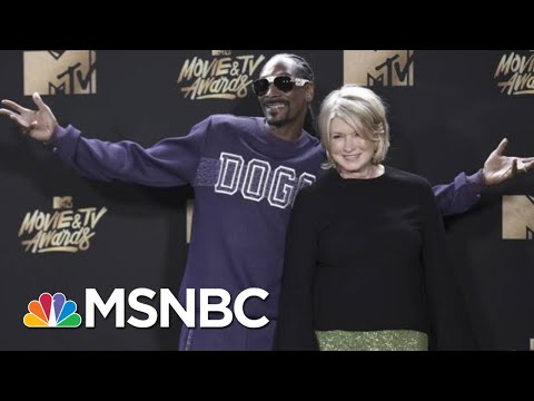 Snoop Dogg On What He Did For Biden That He's Never Done For Any Other Politician   MSNBC