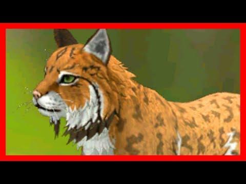 Видео Симулятор жизни зверей онлайн