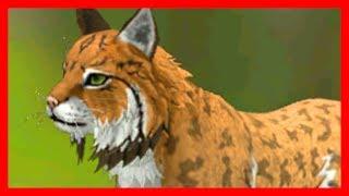СИМУЛЯТОР РЫСИ #1 РЫСЯТА Симулятор Жизни Зверей WildCraft про котят и собак от ДЕТСКИЕ ИГРЫ