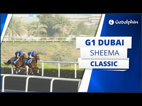 Saeed bin Suroor | G1 Dubai Sheema Classic preview