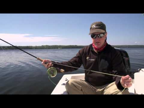 Rice Lake Bass & Panfish | Ontario