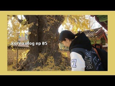 [성균관 유생의 일상 EP.05] 성균관대학교 투어 + 미니 하울 / (eng soon) skku tour + mini haul