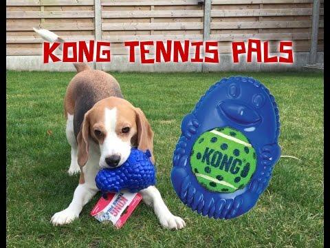 Dog Toy Critic Louie The Beagle Episode #7 : KONG TENNIS PALS