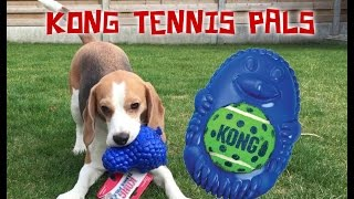 "Dog Toy Critic ""louie The Beagle"" Episode #7 : Kong Tennis Pals"