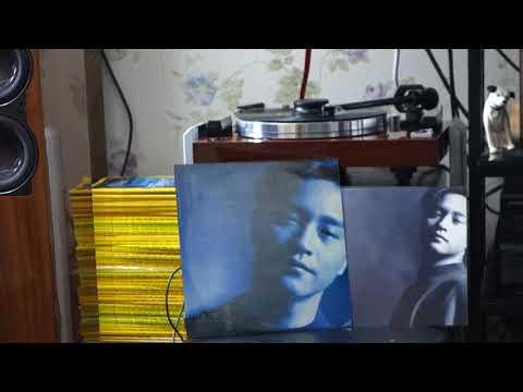 張國榮 明星 黑膠唱片  Lesile Cheung Salute 1989 Vinyl