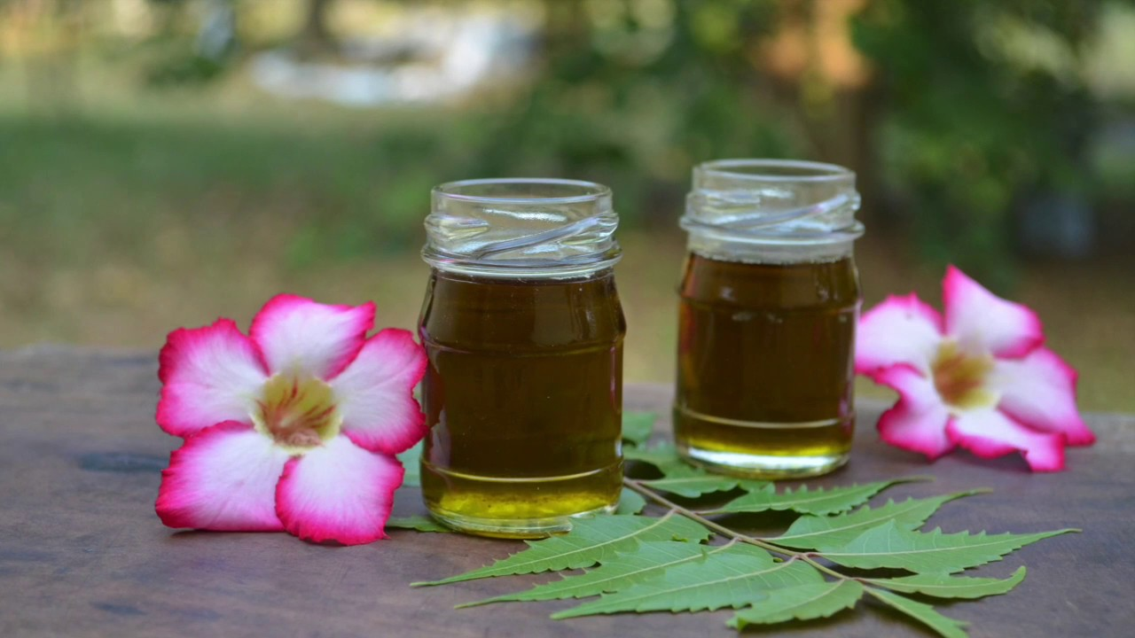Neem Oil: Benefits, Side Effects, Dosage, and Interactions
