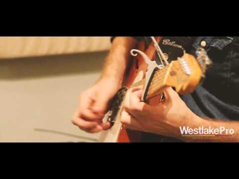 Westlake Pro & Moosecat Recording presents Livingmore