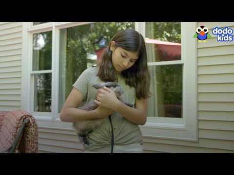 Camila & Buddy the Bunny | Adventure Pals