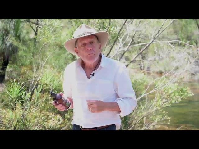 The Wildlife Man TV - Live Stream