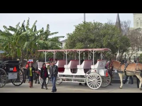New Orleans Port Tour: Departure port for NCL Dawn Western Caribbean Cruise