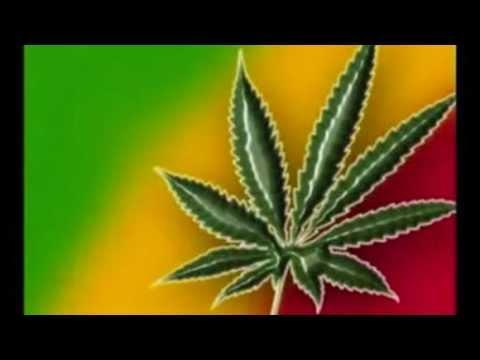 Zona Ganjah - Fuma del Humo y Sana (Marihuana)