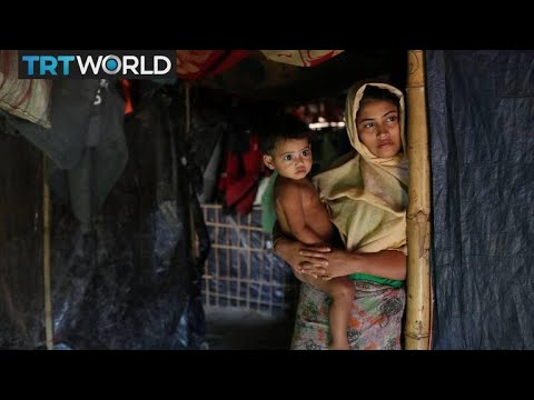 Rohingya Refugee Crisis: Child refugees forced into marriage for survival