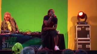 Smiley Live @ Reggae Roepaen 2013 - Red light